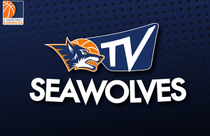 seawolves_tv_600x400